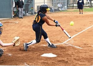 Softball Swing